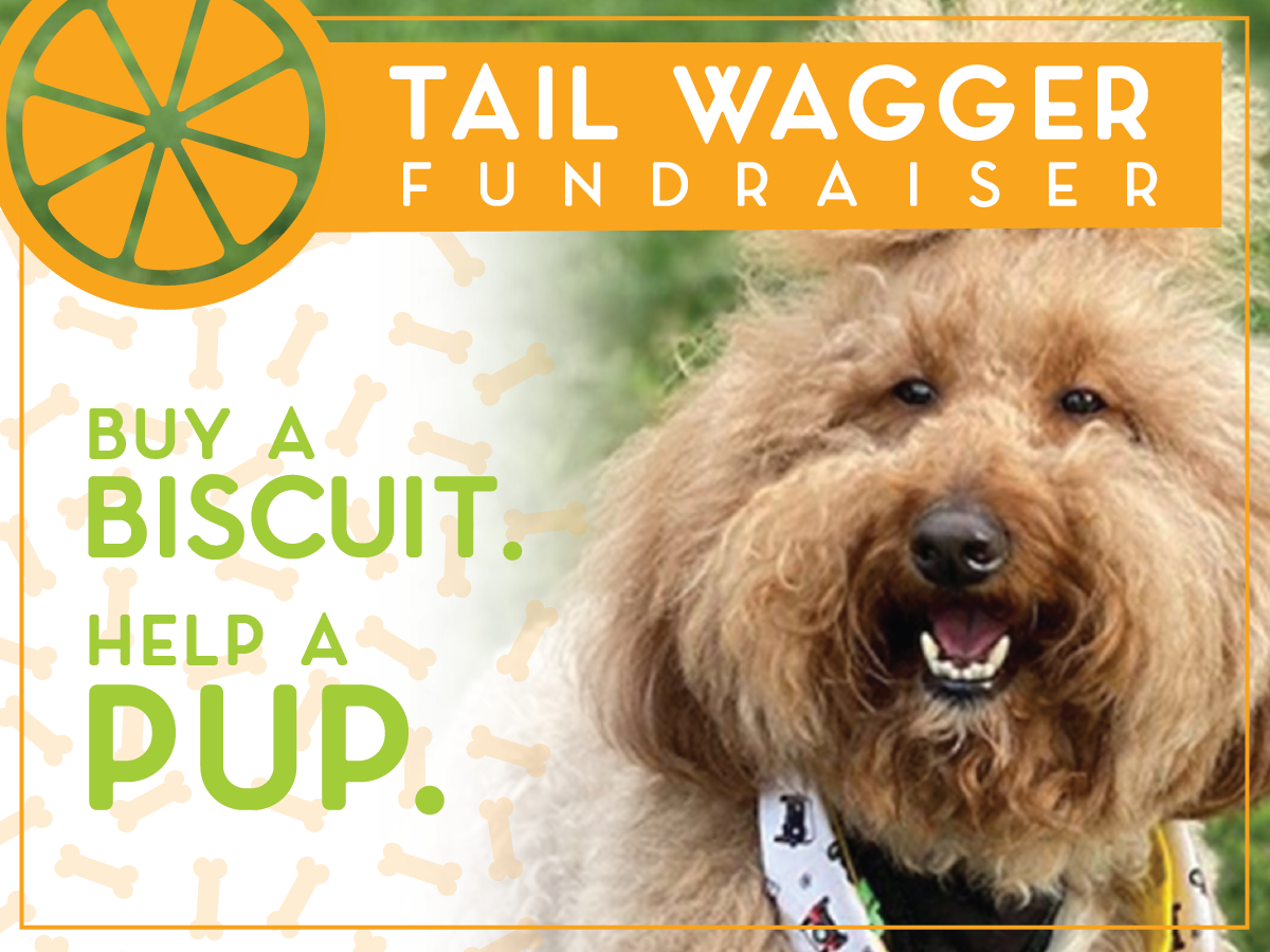 Buy a Biscuit, Help a Pup in August